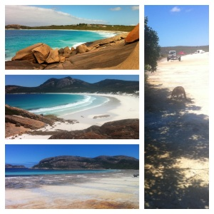 We kicked off new year in nature - Esperance